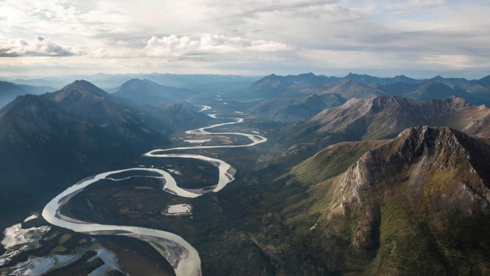 Sanções administrativas ambientais em espécie