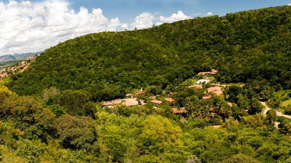 Instituto de Sebastião Salgado já recuperou 2000 nascentes no Vale do Rio Doce